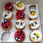 muffinki pszczółki i biedronki