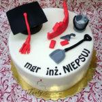 tort dla inżyniera