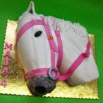 Koń 1