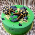 tort z żółwiami