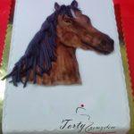 Koń 2