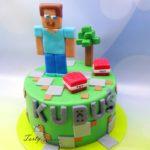 Minecraft 14