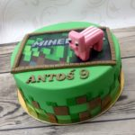 Minecraft 16