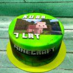Minecraft 20