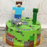 Minecraft 35