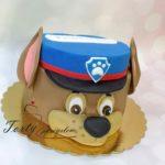 Psi patrol 42