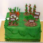 tort kwadratowy ogródek warzywny